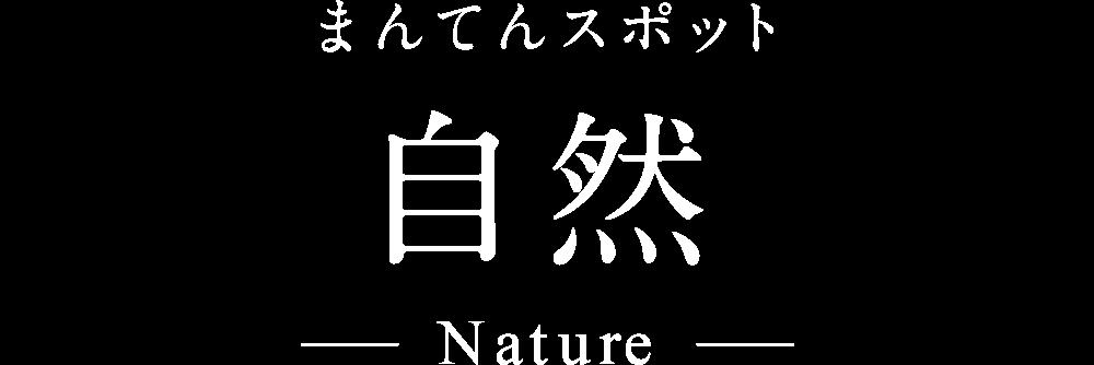 自然 - まんてんスポット